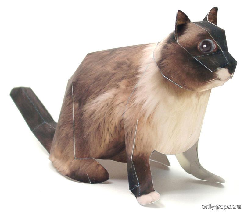 Кот из картона своими руками фото 337