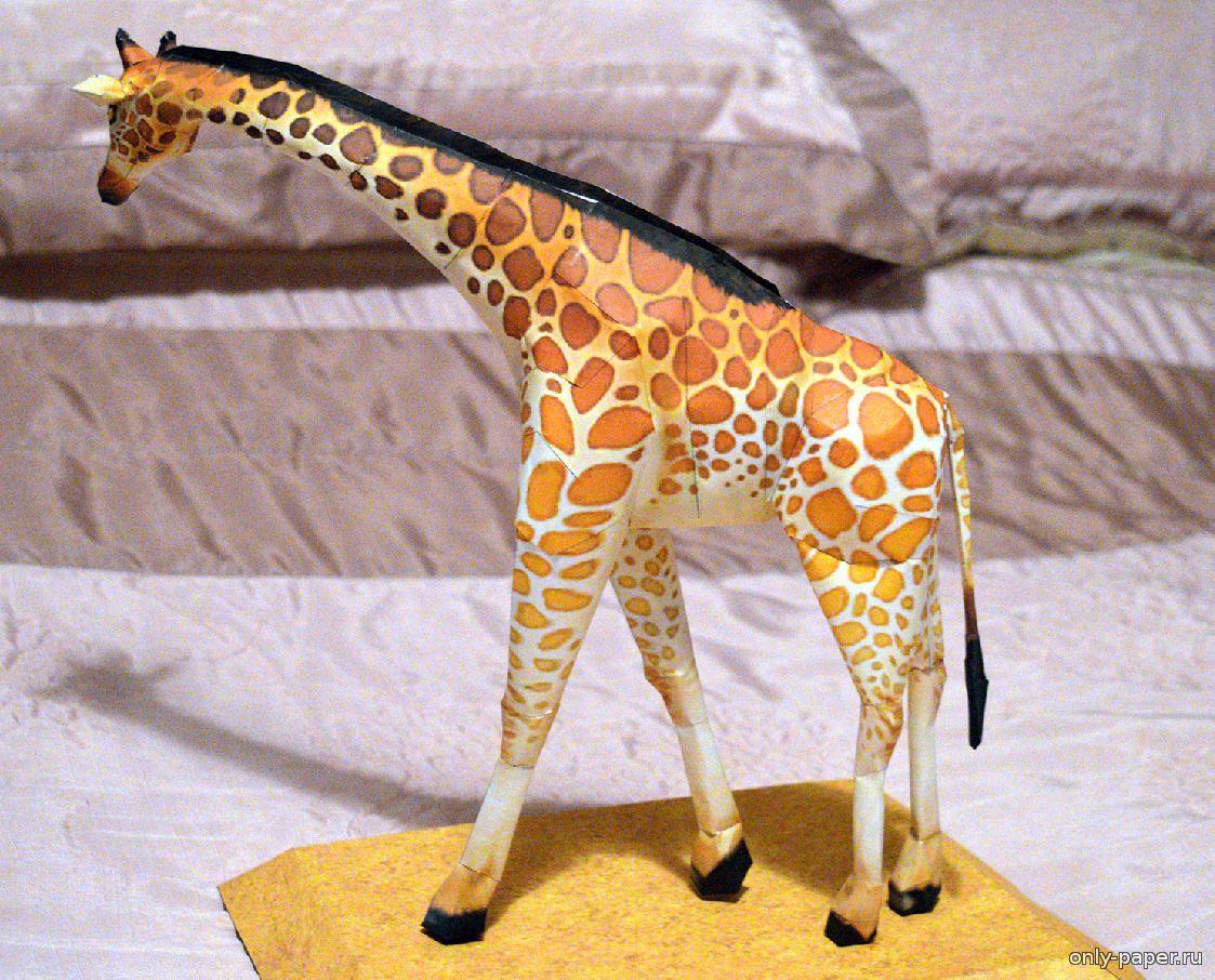 Жираф для поделок из бумаги 983
