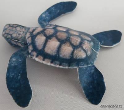 Модель морской черепахи из бумаги/картона