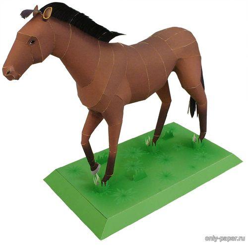 Бумажная модель скаковой лошади