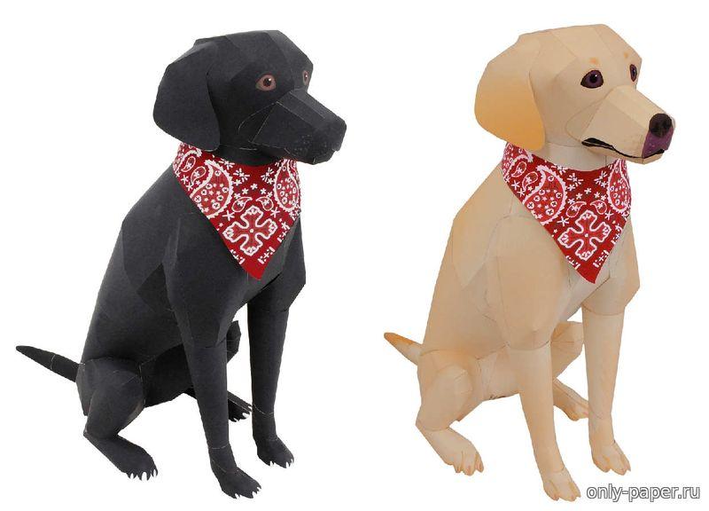 Собака из бумаги | Просмотров: