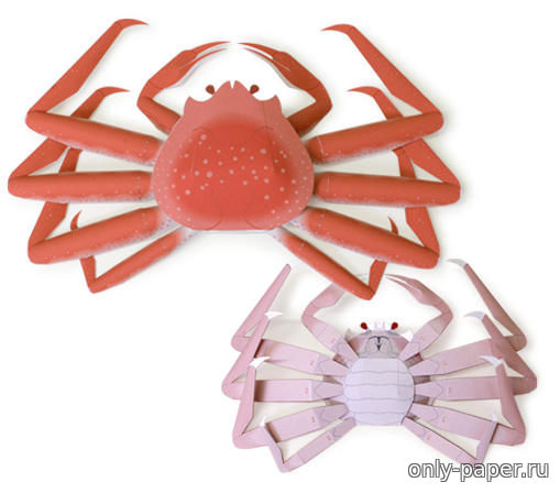 crab research paper Explore the latest articles, projects, and questions and answers in crab research, and find crab research experts.