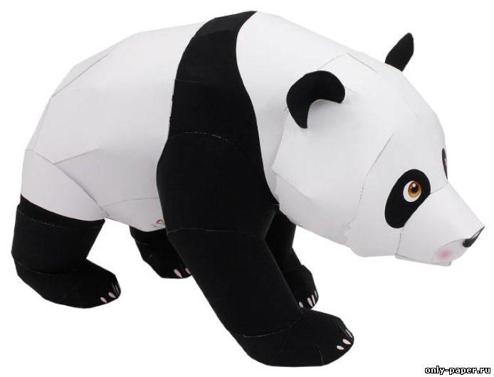 Название: Гигантская панда