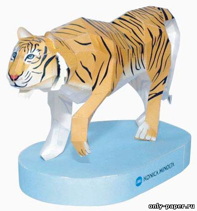 схема тигр бумага